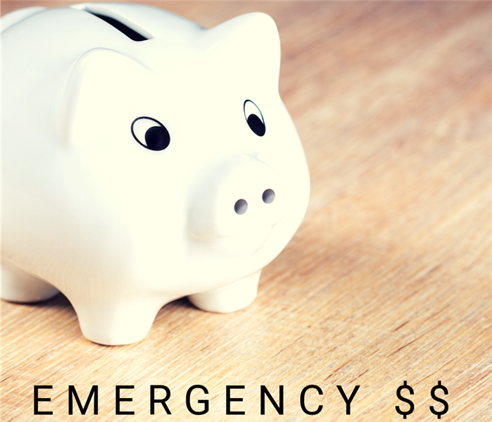 Water Damage Preparedness Profile: Emergency Finances