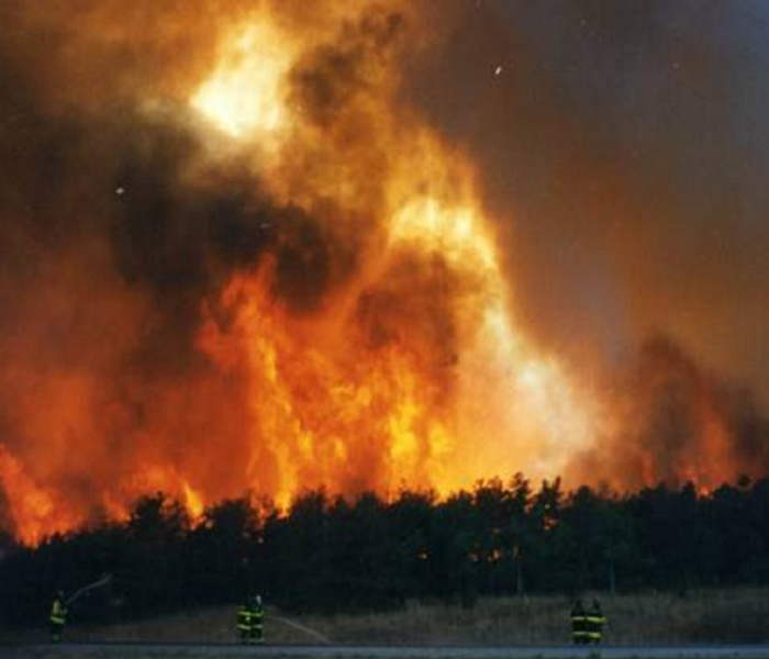 Fire Damage Wildfires: Watches and Warnings